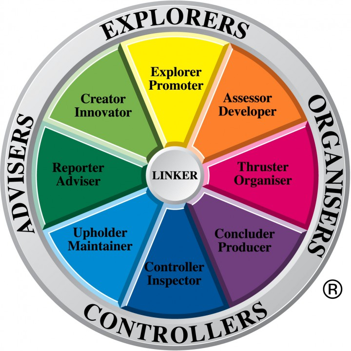 Team Management Profile Wheel | Ancora Learning