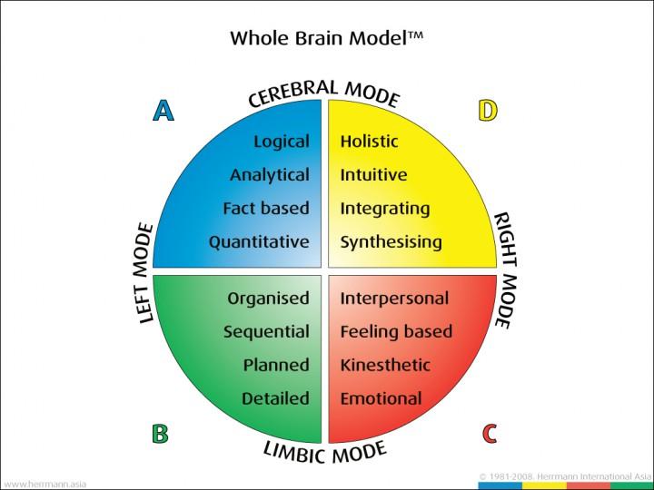 Whole-Brain-Model